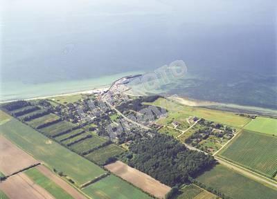 Sælvig 2001