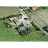 Abild 2004