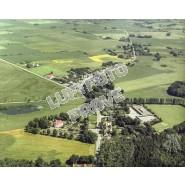Damsholte 1982