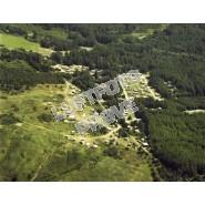Svinkløv Plantage 1982
